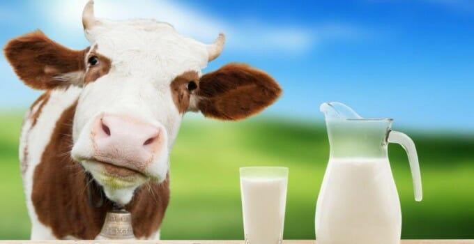 latte biologico i vantaggi